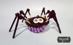arañas de magdalena